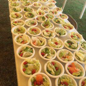 WEB-Salad